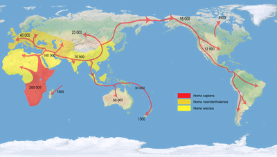 Patterson human migrations